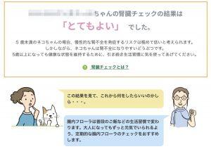 猫の腸内フローラ腎臓検査