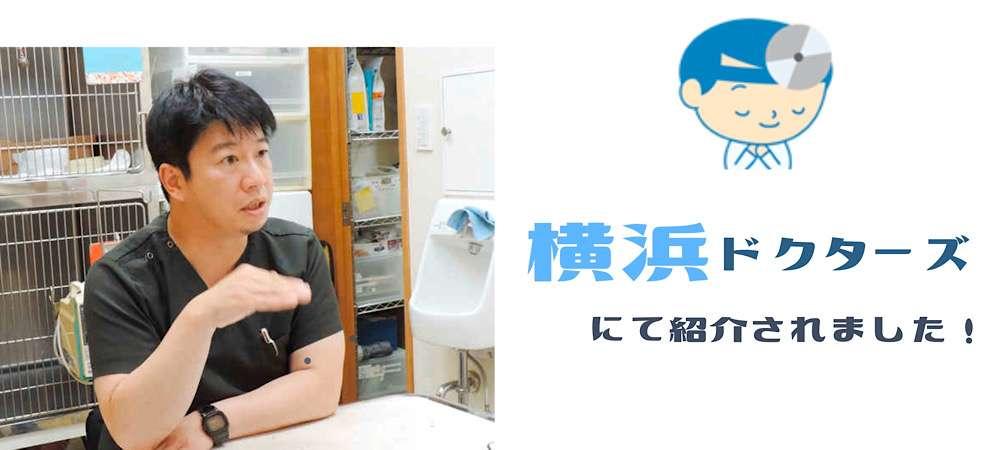 横浜ドクターズにて紹介されました